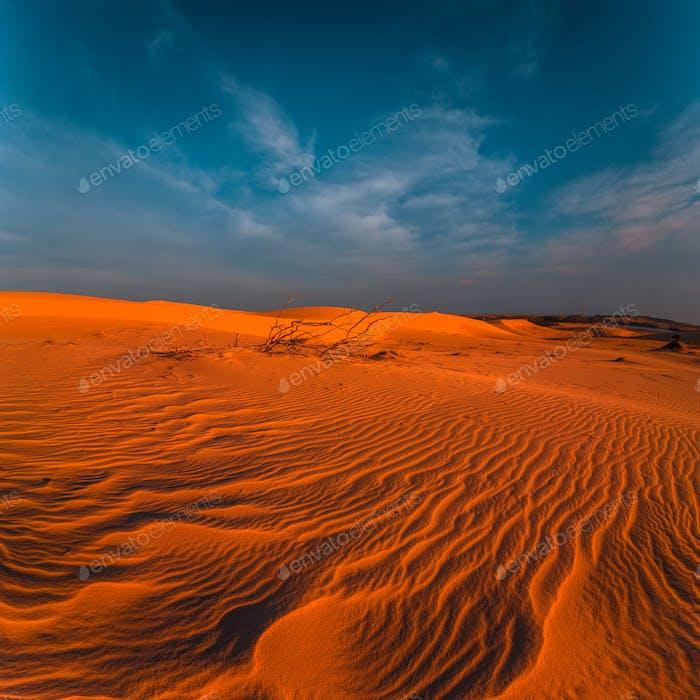 Impresionante vista de las dunas de Arena solitarias