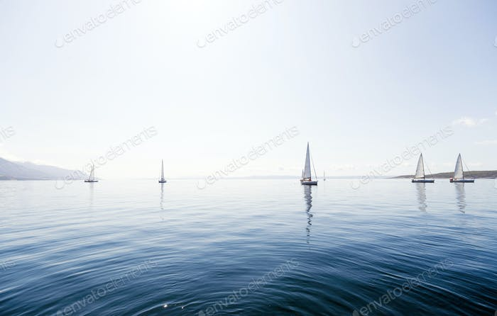 Portrait of sailing boats on open sea