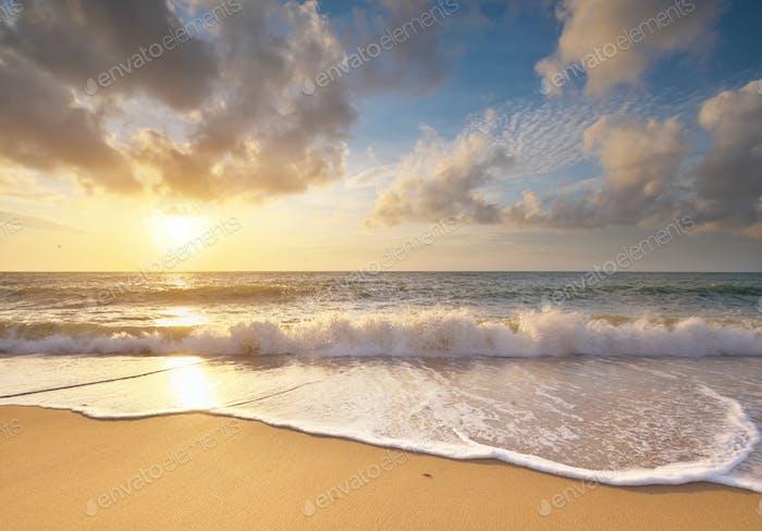Sandy seashore at sunset.