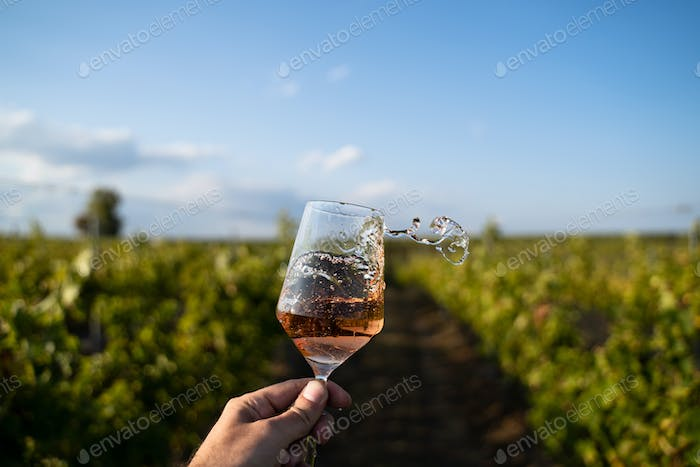 hand holding a glass of rose wine in front of vineyard