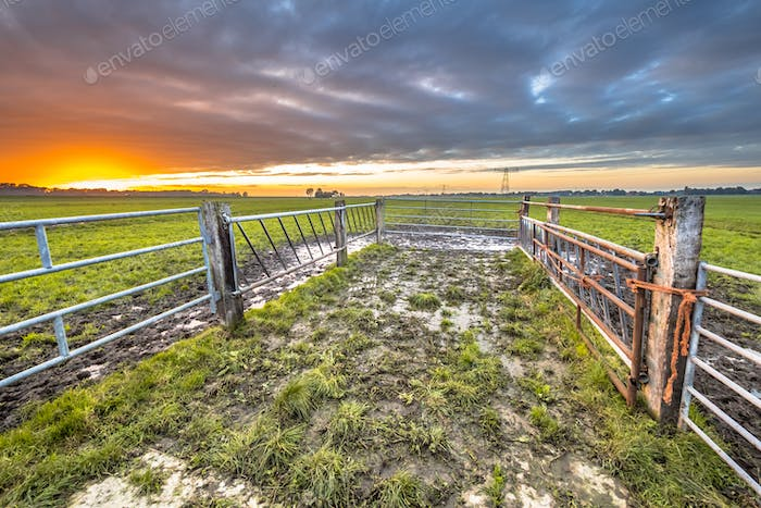 Sunset over gate in lowland meadow