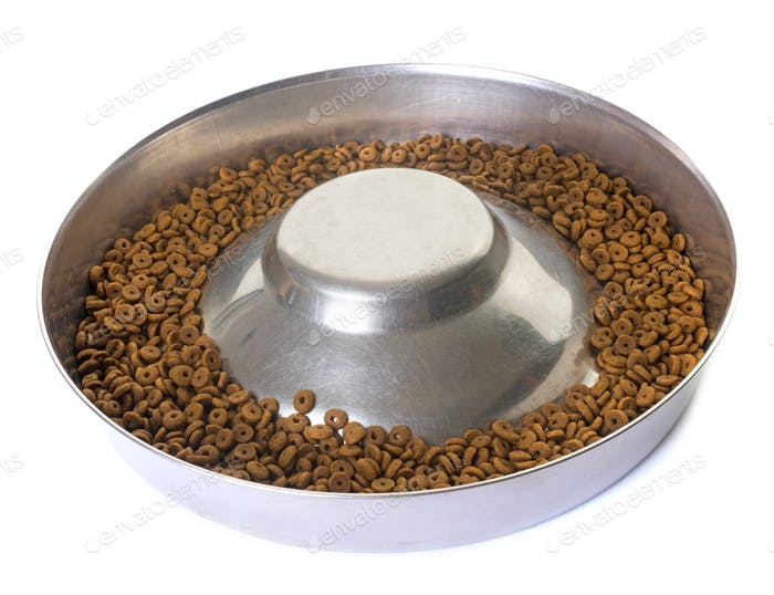 bowl for dry pet food
