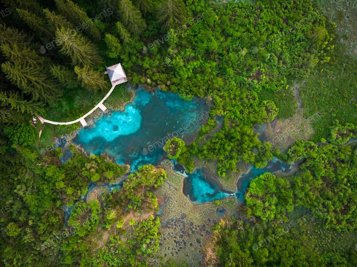 Thumbnail for Natural pattern in top down aerial view over Zelenci,Slovenia
