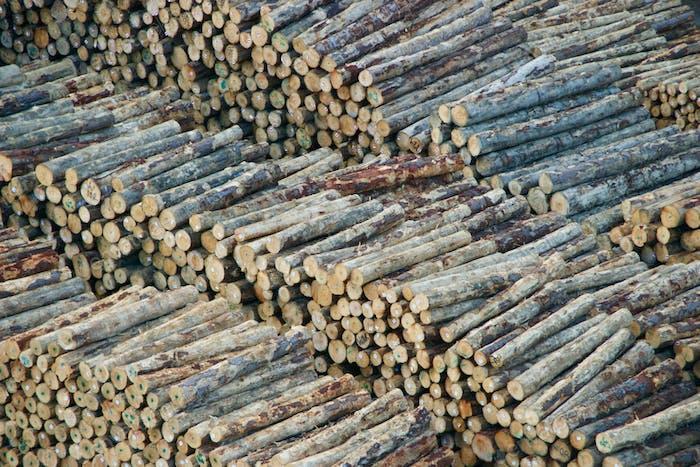Holzstapeln