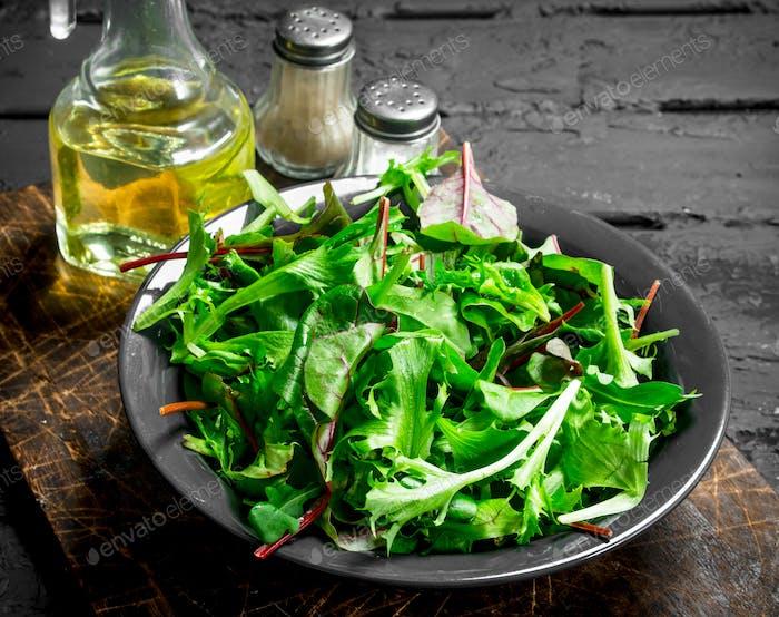 Healthy salad. Arugula salad in a bowl.