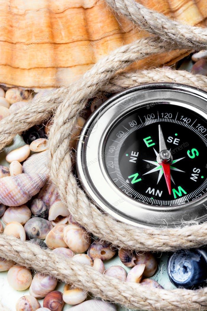 Sea compass and seashells
