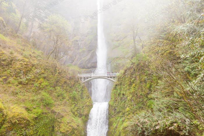 Multnomah Falls and Benson Footbridge
