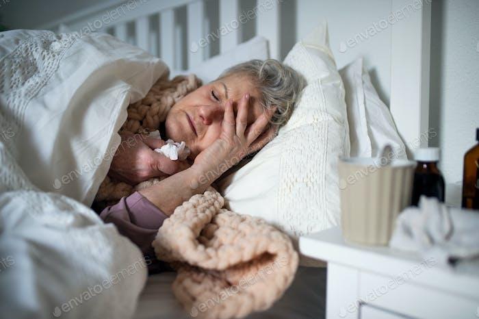 Kranke Seniorin schläft zu Hause im Bett, Konzept der Erkältung und Grippe