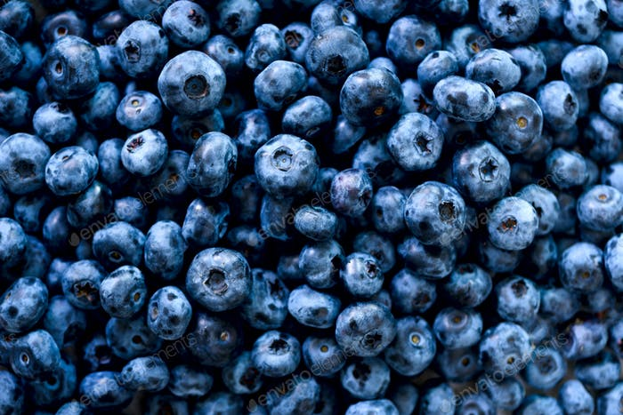 Fresh blueberries background with copy space for your text. Border design. Vegan and vegetarian
