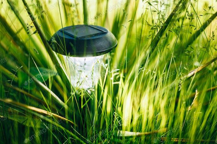 Kleine Solar-Gartenleuchte, Laternen im Blumenbeet. Gartendesign
