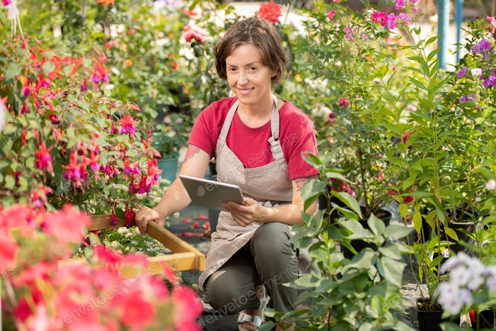 Young seller of garden flowers with touchpad checking information