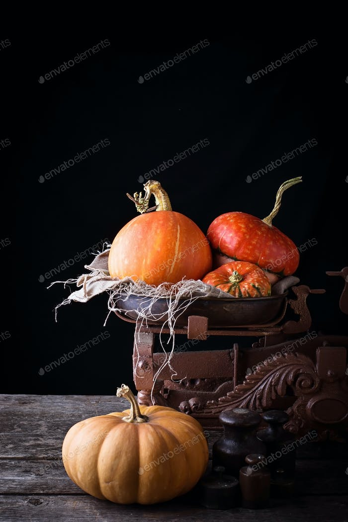 Pumpkin in vintage rusted weight