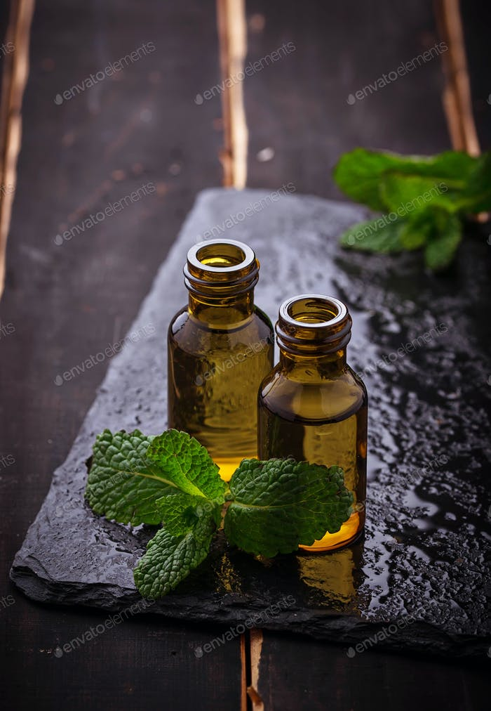 Mint oil in small bottles and fresh mint