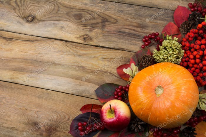 Fall background with pumpkin, rowan berries, copy space