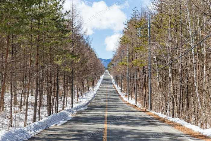 Winter Country Road With Trees Beside