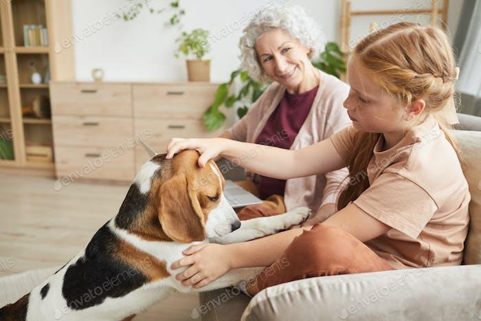 Cute Girl petting Dog at Home