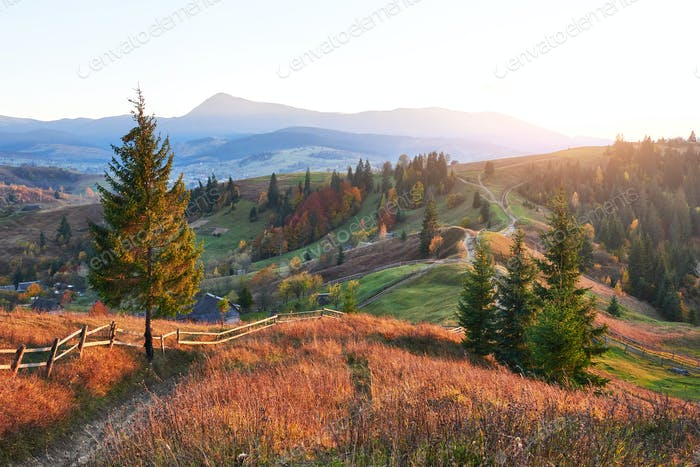 Amazing autumn morning scenery in mountains with meadow and colorful trees on foreground and fog