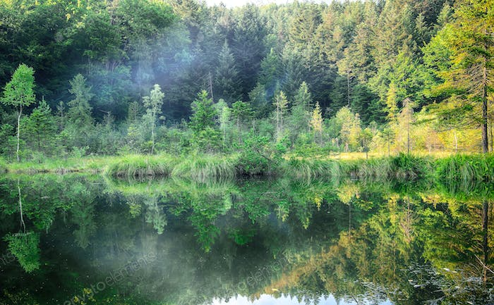 Green forest, dramatic sky, meadow and reflection in water of Cr