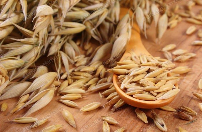 Bio-Haferkörner auf Holzlöffel, gesunde Ernährung
