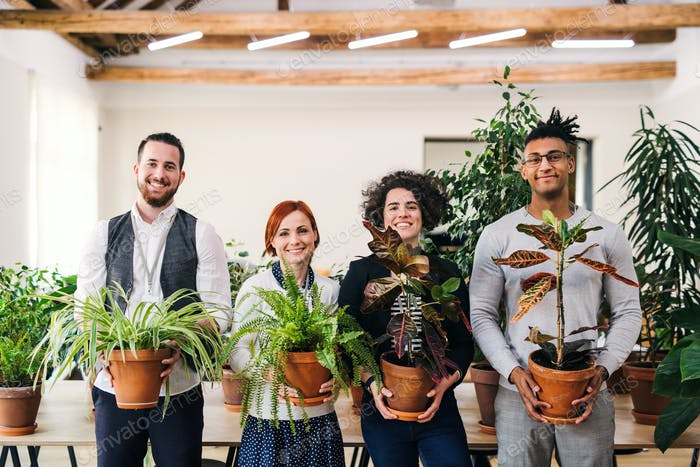 Group of young businesspeople standing in office, holding plants
