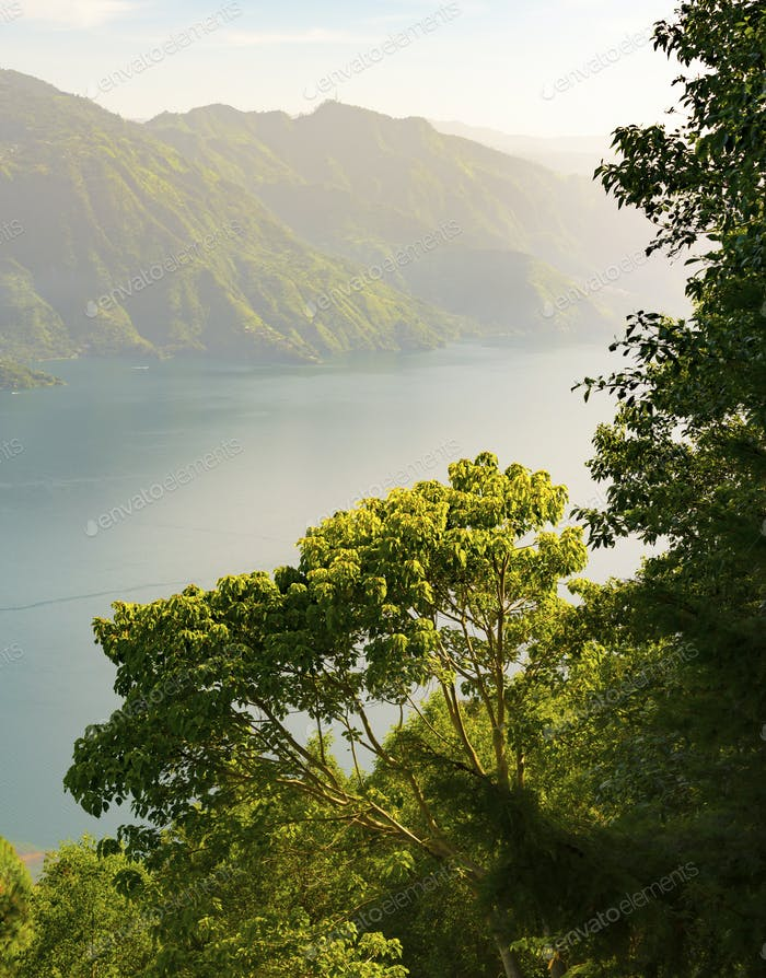 Lake Atitlan Forest Sunrise