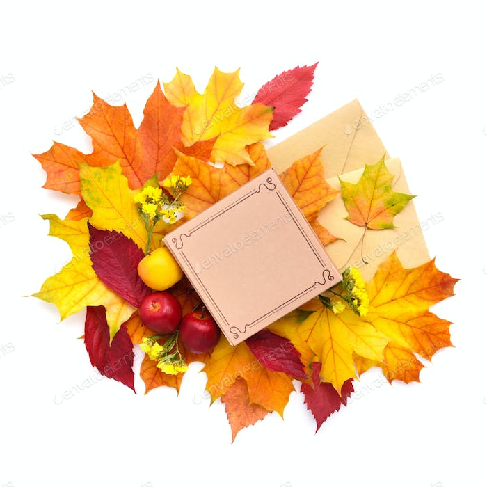 Autumn leaves, gift box and envelopes on a white background. Top