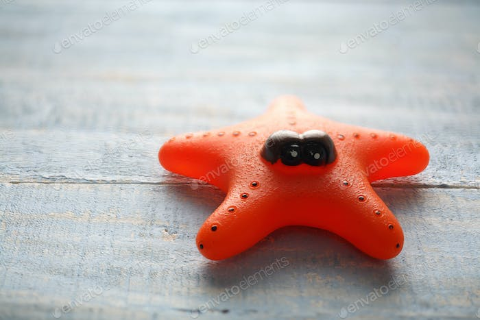 Starfish Toy
