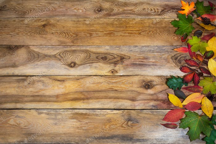 Thanksgiving background with leaves on old table