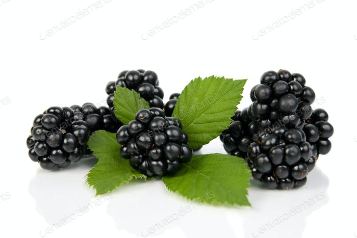 Blackberries with green leaves.