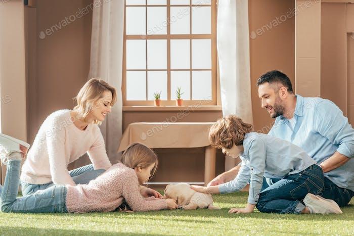 счастливая молодая семья с милым щенком на дворе картонного дома