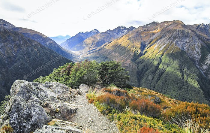 Mountain Scenery in Arthur's Pass National Park, New Zealand