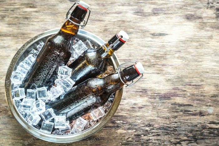 Bottles of beer in ice cubes