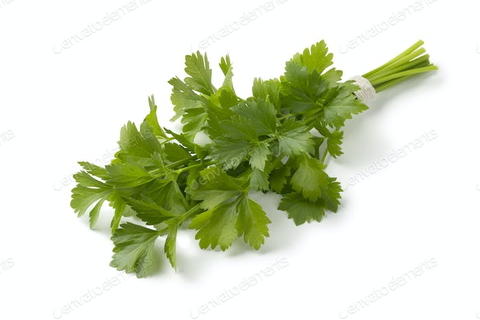 Bunch of fresh green lovage