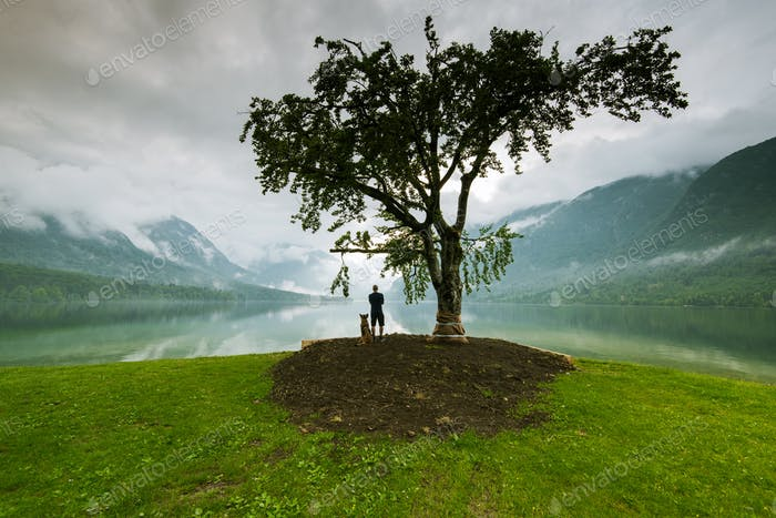 Man with dog watching sunset under lonely tree in Slovenia