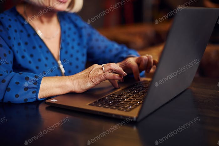 Portrait of senior woman that sits indoors in the cafe with modern laptop