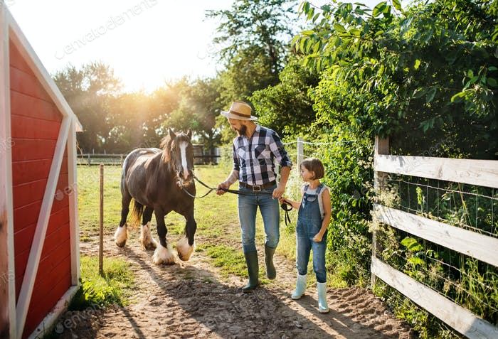Ein reifer Vater mit kleiner Tochter arbeitet auf kleinen Familientierfarm