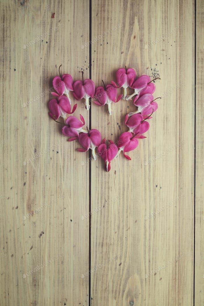 Bleeding heart flowers arranged in a heart shape