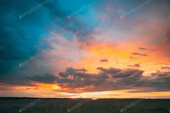 Spring Summer Meadow At Evening Sunset Sunrise. Natural Bright D