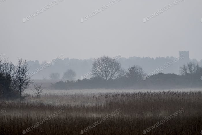 Hazy landscape with reeds and trees and a crenelated tower in the distance.