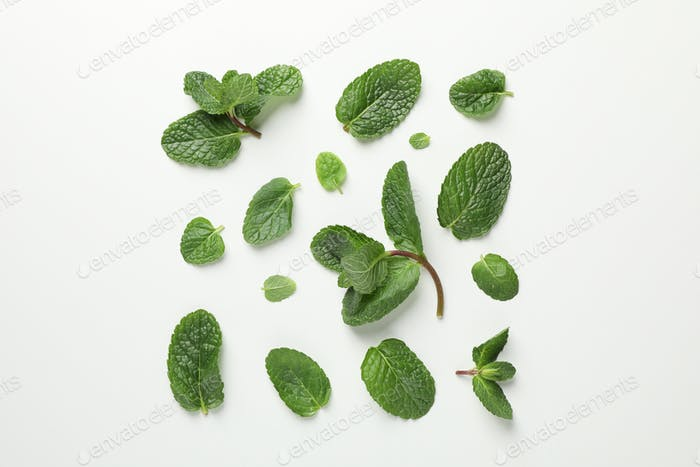 Flat lay with mint on white background, top view