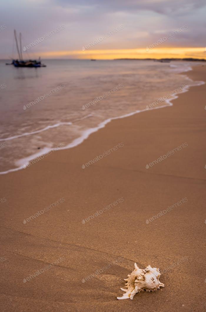 Beach near the fishing village Anakao