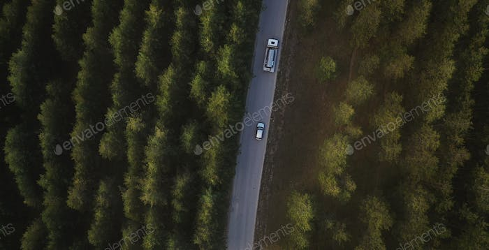 Car and tank truck on road through pine forest, aerial view