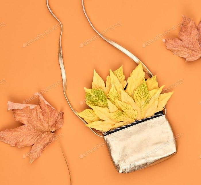 Autumn Minimal