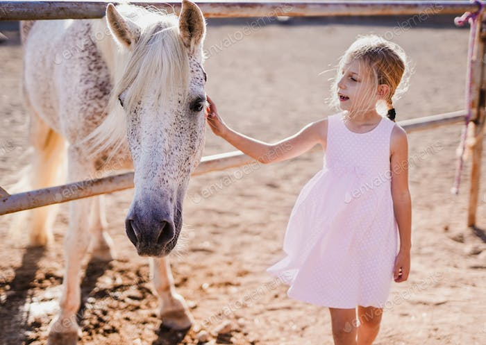 Small girl caress a horse outdoor - Child and animal love
