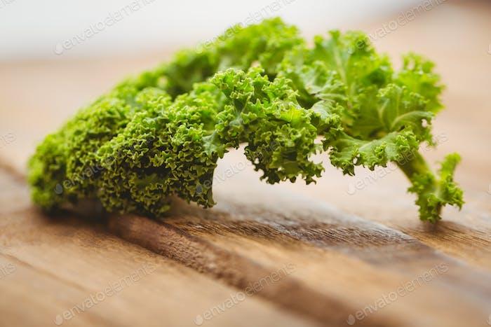 Curly parsley on wooden board shot in studio