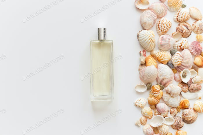 Glass perfume bottle and seashells isolated on white with copy space, top view