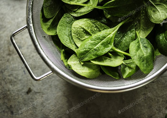 Closeup of fresh organic spinach leaves