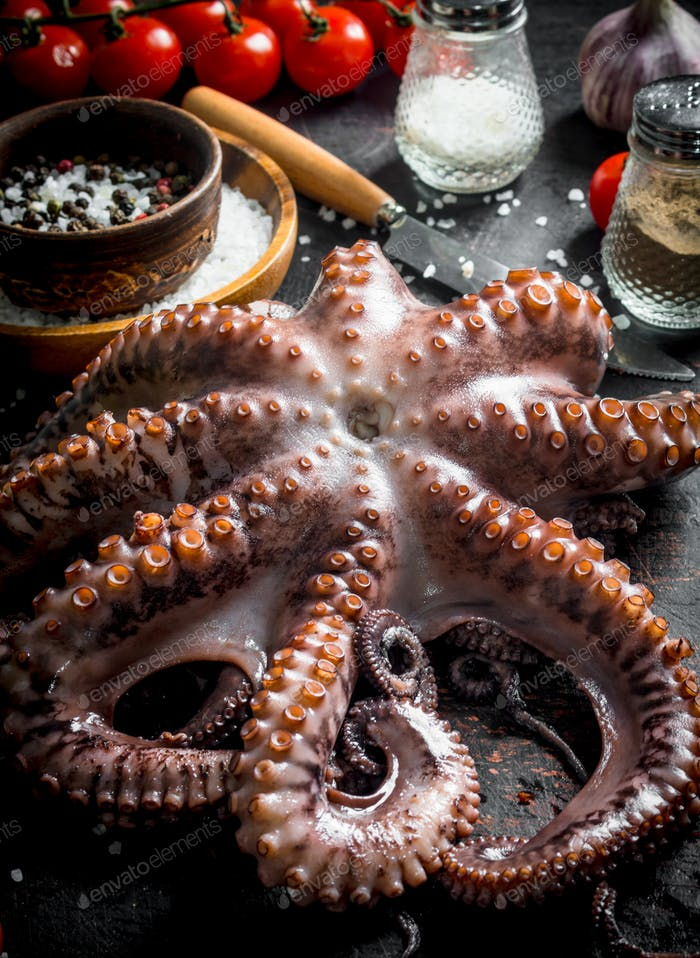 Fresh octopus with spices.