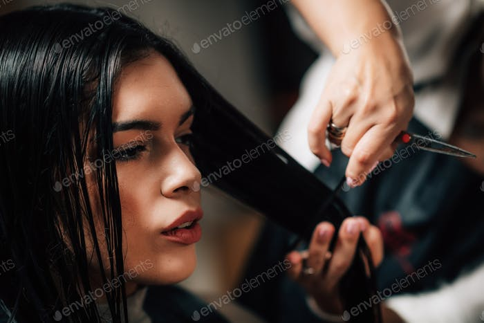Beautiful Woman in Hairdresser Salon