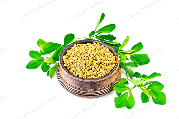 Fenugreek with green leaves in bowl